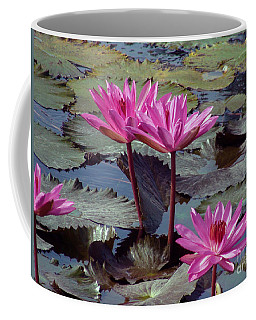 Coffee Mug featuring the photograph Lotus Flower by Sergey Lukashin
