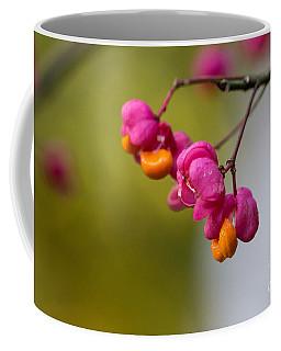 Lovely Colors - European Spindle Flower Seeds Coffee Mug