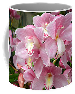 Coffee Mug featuring the photograph Cymbidium Pink Orchids by Jeannie Rhode