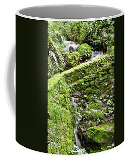 Lovely Waterfall Coffee Mug