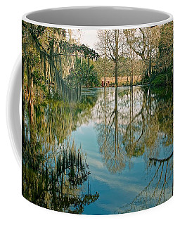 Low Country Swamp Coffee Mug