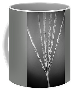 Coffee Mug featuring the photograph Loxahatchee Grass by Bradley R Youngberg