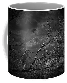 Loxahatchee Heron At Sunset Coffee Mug