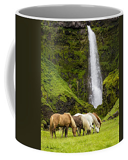 Lunch At The Waterfall Coffee Mug