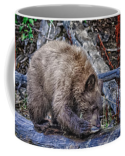Coffee Mug featuring the photograph Lunch Break by Jim Thompson