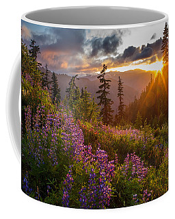 Lupine Meadows Sunstar Coffee Mug by Mike Reid