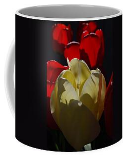 Lurking Shadow Coffee Mug
