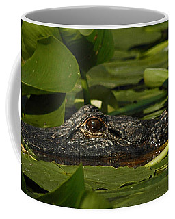 Coffee Mug featuring the photograph Lying In Wait by Vivian Christopher