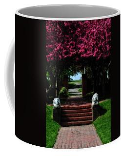 Lynch Park Coffee Mug