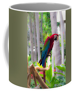 Coffee Mug featuring the photograph Macaw by Angela DeFrias