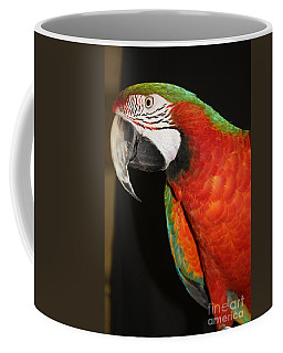 Coffee Mug featuring the photograph Macaw Profile by John Telfer