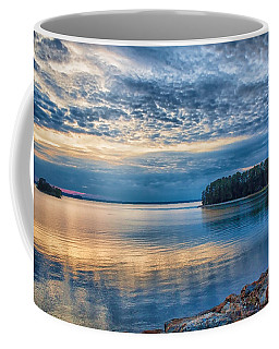 Mackerel Sunset Coffee Mug