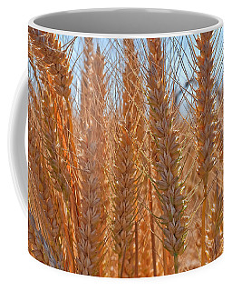 Macro Of Wheat Art Prints Coffee Mug by Valerie Garner