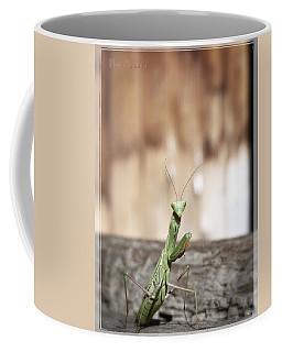 Madame Mantis Coffee Mug