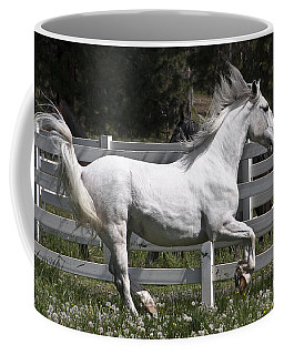 Coffee Mug featuring the photograph Maestoso Aurorra D3990 by Wes and Dotty Weber