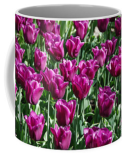 Coffee Mug featuring the photograph Magenta Tulips by Allen Beatty