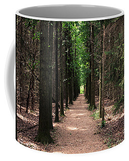 Magical Path Coffee Mug