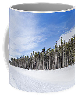 Magnetic North Coffee Mug