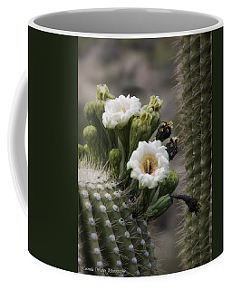 Coffee Mug featuring the photograph Magnificant Bloom Of The Saguaro by Lucinda Walter