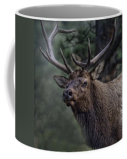 Magnificence Coffee Mug by Anne Rodkin