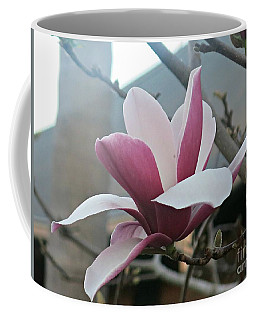Magnificent Magnolia Blossom Coffee Mug by Leanne Seymour