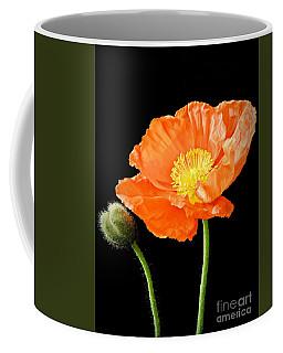 Magnificent Simplicity  Coffee Mug
