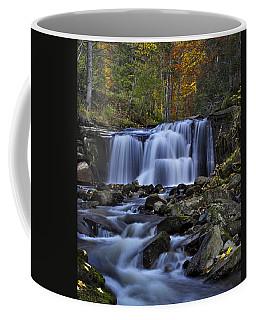 Magnificent Waterfall Coffee Mug