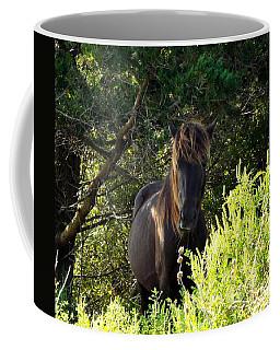 Magnificent Wild Horse Coffee Mug