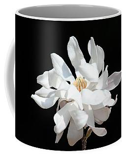 Magnolia Blossom Coffee Mug