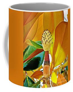 Coffee Mug featuring the photograph Magnolia Flower by Olga Hamilton