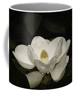 Coffee Mug featuring the photograph Magnolia by Penny Lisowski