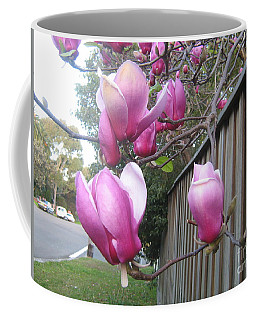 Coffee Mug featuring the photograph Magnolias In Bloom by Leanne Seymour