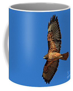 Coffee Mug featuring the photograph Mahogany by Beth Sargent