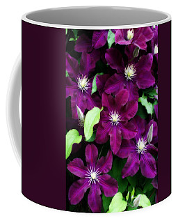 Majestic Amethyst Colored Clematis Coffee Mug