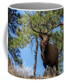Majestic Bull Elk Stands Tall Coffee Mug