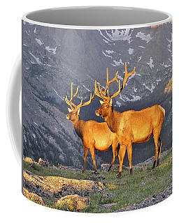 Coffee Mug featuring the photograph Majestic Elk by Diane Alexander