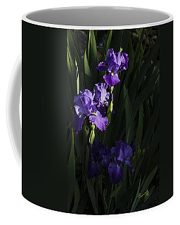 Majestic Spotlight Coffee Mug