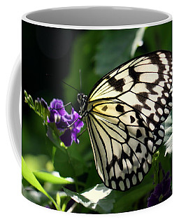 Coffee Mug featuring the photograph Malabar Tree Nymph  by Suzanne Stout