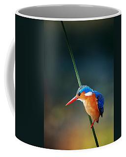 Malachite Kingfisher Coffee Mug