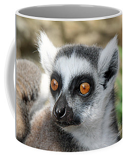 Coffee Mug featuring the photograph Malagasy Lemur by Sergey Lukashin