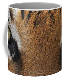 Malayan Tiger Eyes Coffee Mug