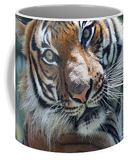 Malayan Tiger Coffee Mug