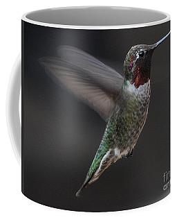 Coffee Mug featuring the photograph Male Anna Hummingbird In Flight by Jay Milo