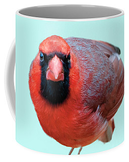 Male Cardinal Portrait Coffee Mug