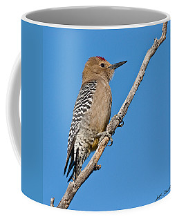 Male Gila Woodpecker Coffee Mug