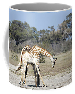 Coffee Mug featuring the photograph Male Giraffes Necking by Liz Leyden