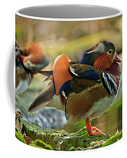Coffee Mug featuring the photograph Male Mandarin Duck On A Rock by Eti Reid