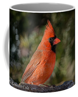 Male Northern Cardinal Coffee Mug