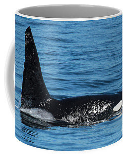 Coffee Mug featuring the photograph Lonesome George Ca165  Male Orca Killer Whale In Monterey Bay California 2013 by California Views Mr Pat Hathaway Archives