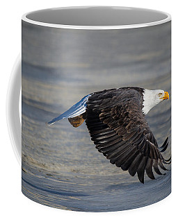 Male Wild Bald Eagle Ready To Land Coffee Mug by Eti Reid